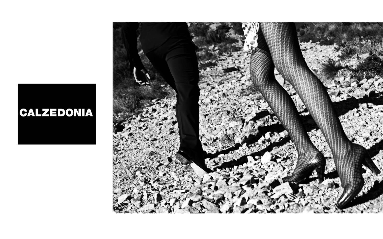Shoe - Photograph